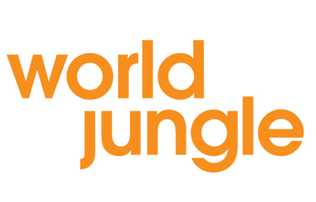World Jungle – making a difference for young people